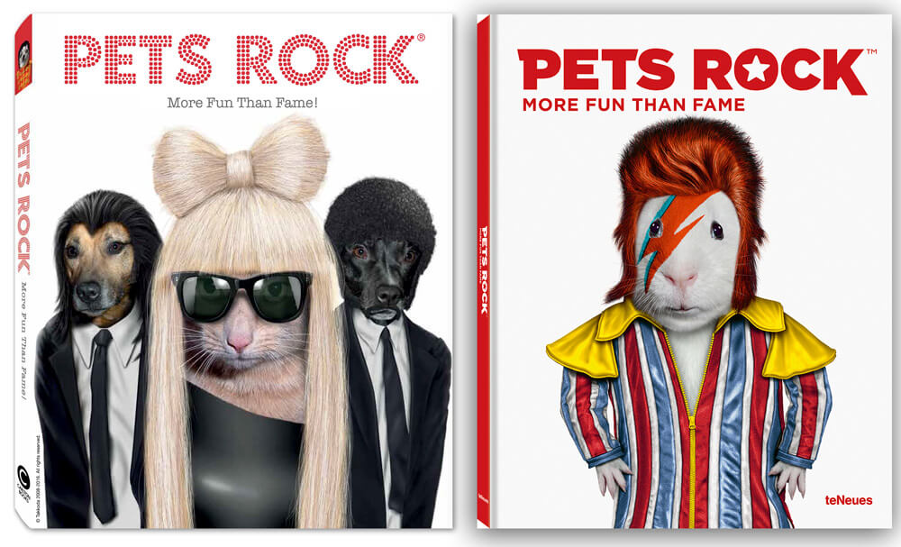 Pets Rock More Fun Than Fame Book Launch